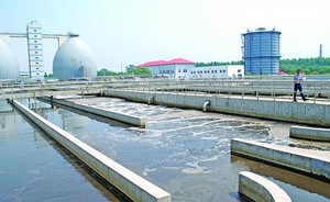 Water treatment bacteria